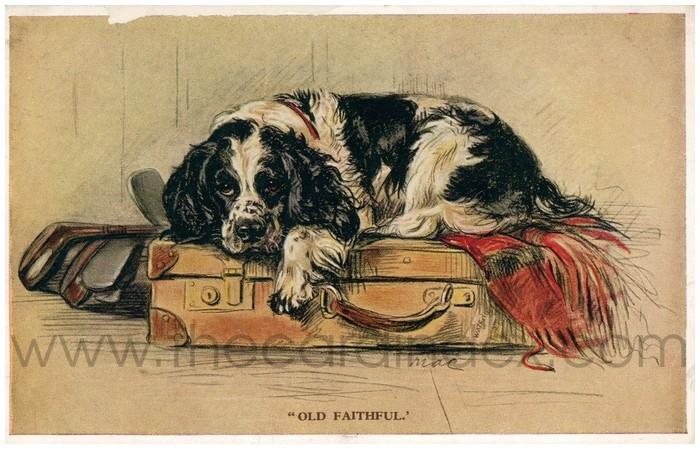 Postcard front: Old Faithful