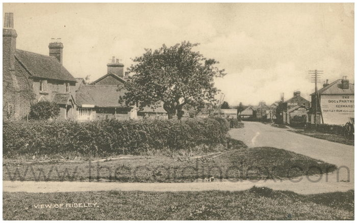 Postcard front: View of Riseley