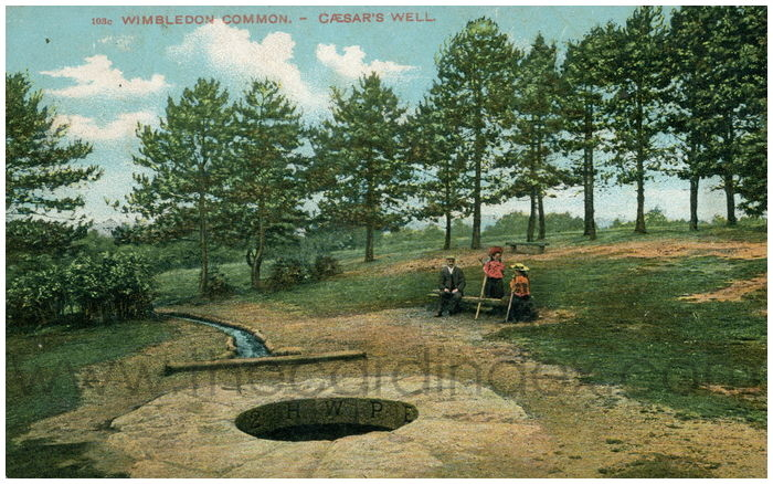 Postcard front: Wimbledon Common. - Ceasar's Well