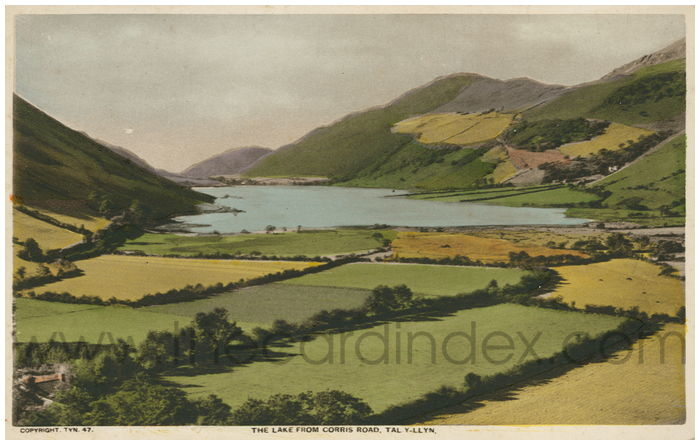 Postcard front: The Lake from Corries Road, Tal-y-LLyn.