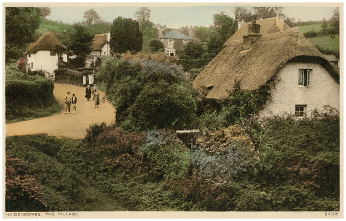 Postcard front: Maidencombe. The Village.