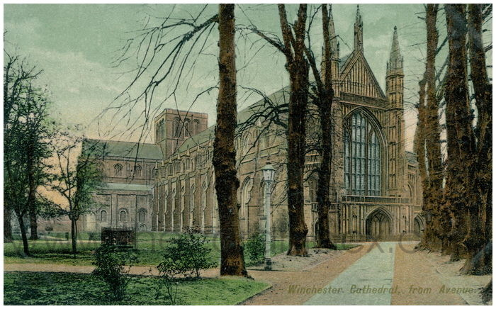 Postcard front: Winchester Cathedral, from Avenue