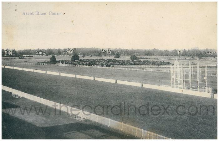 Postcard front: Ascot Race Course