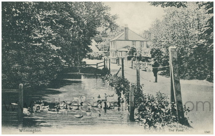 Postcard front: Wilmington. The Pond.