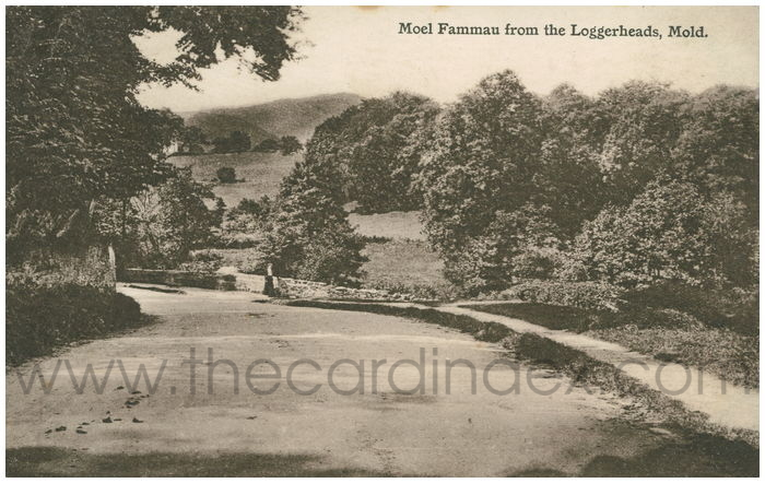 Postcard front: Moel Fammau from the Loggerheads, Mold.