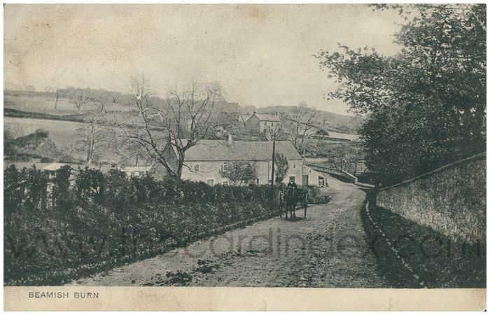 Postcard front: Beamish Burn
