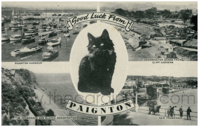 Postcard front: Good Luck From Paignton