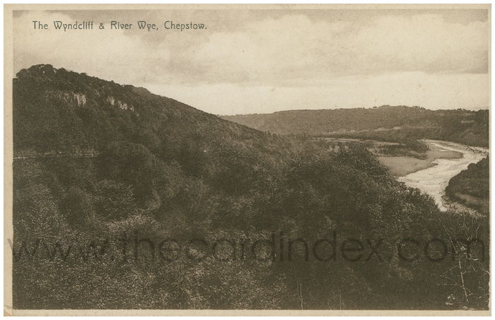 Postcard front: The Wyndcliff & River Wye, Chepstow.