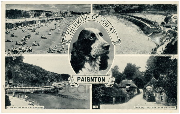 Postcard front: Thinking Of You at Paignton.