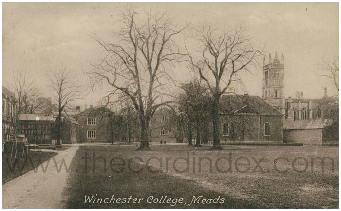 Postcard front: Winchester College, Meads.