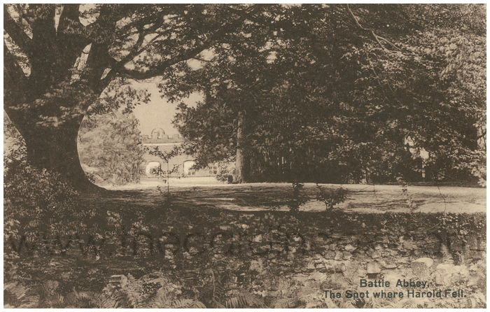 Postcard front: Battle Abbey, The Spot where Harold Fell