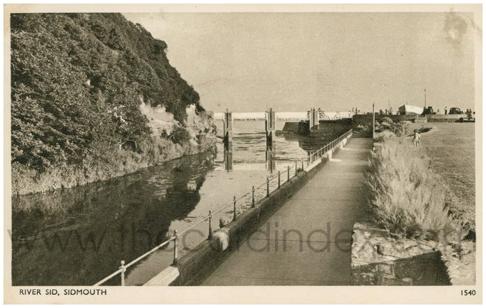 Postcard front: River Sid, Sidmouth