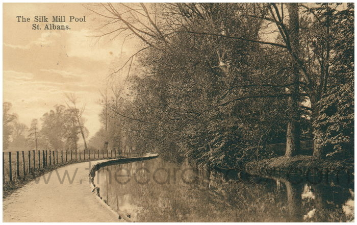 Postcard front: The Silk Mill Pool. St. Albans