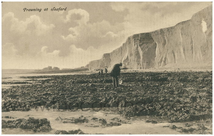 Postcard front: Prawning at Seaford