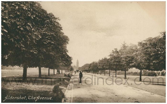 Postcard front: Aldershot, The Avenue.