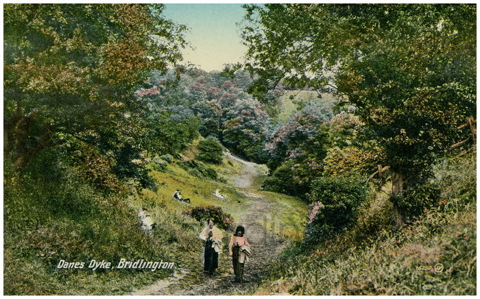 Postcard front: Danes Dyke, Bridlington.