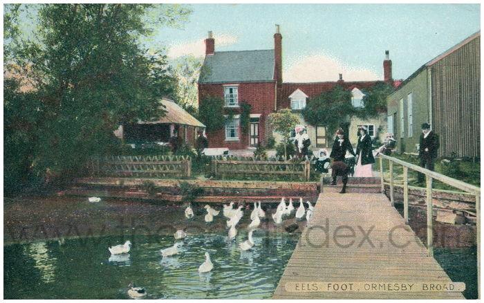 Postcard front: Eels Foot, Ormesby Broad.