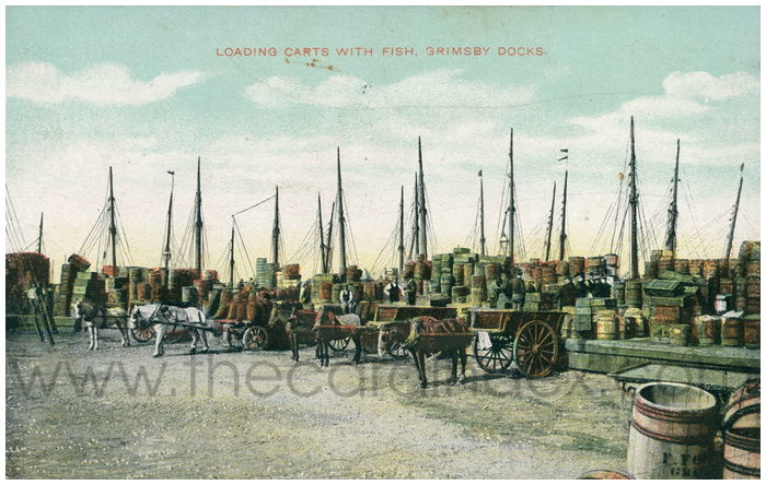 Postcard front: Loading Carts with Fish, Grimsby Docks.