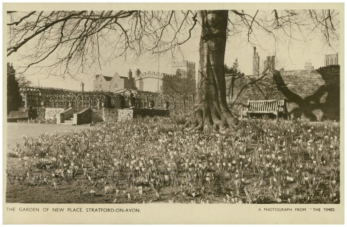 Postcard front: The Garden of New Place, Stratford-on-Avon