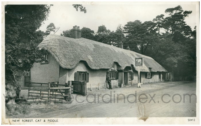 Postcard front: New Forest, Cat & Fiddle.