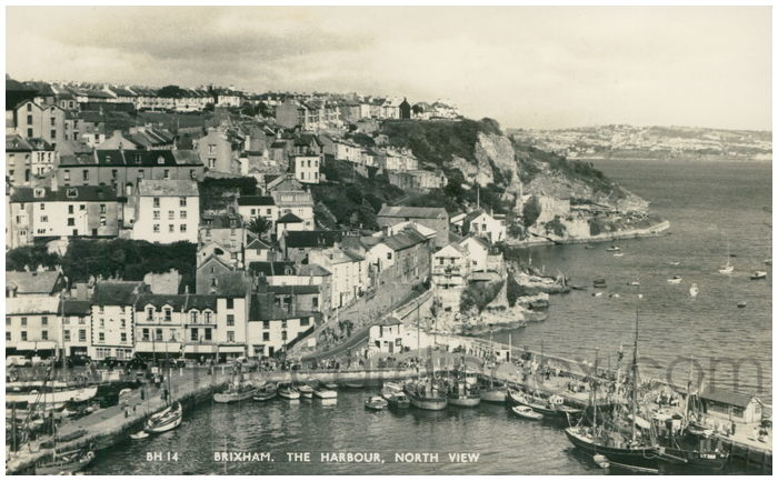 Postcard front: Brixham. The Harbour, North View