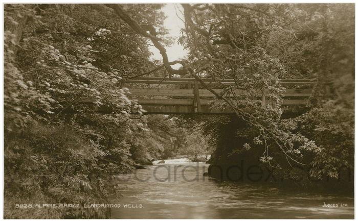 Postcard front: Alpine Bridge. Llandrindod Wells.