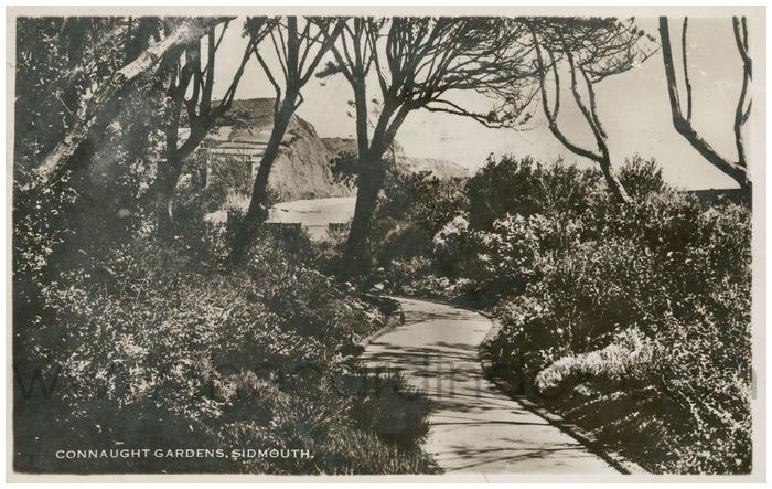 Postcard front: Connaught Gardens, Sidmouth.