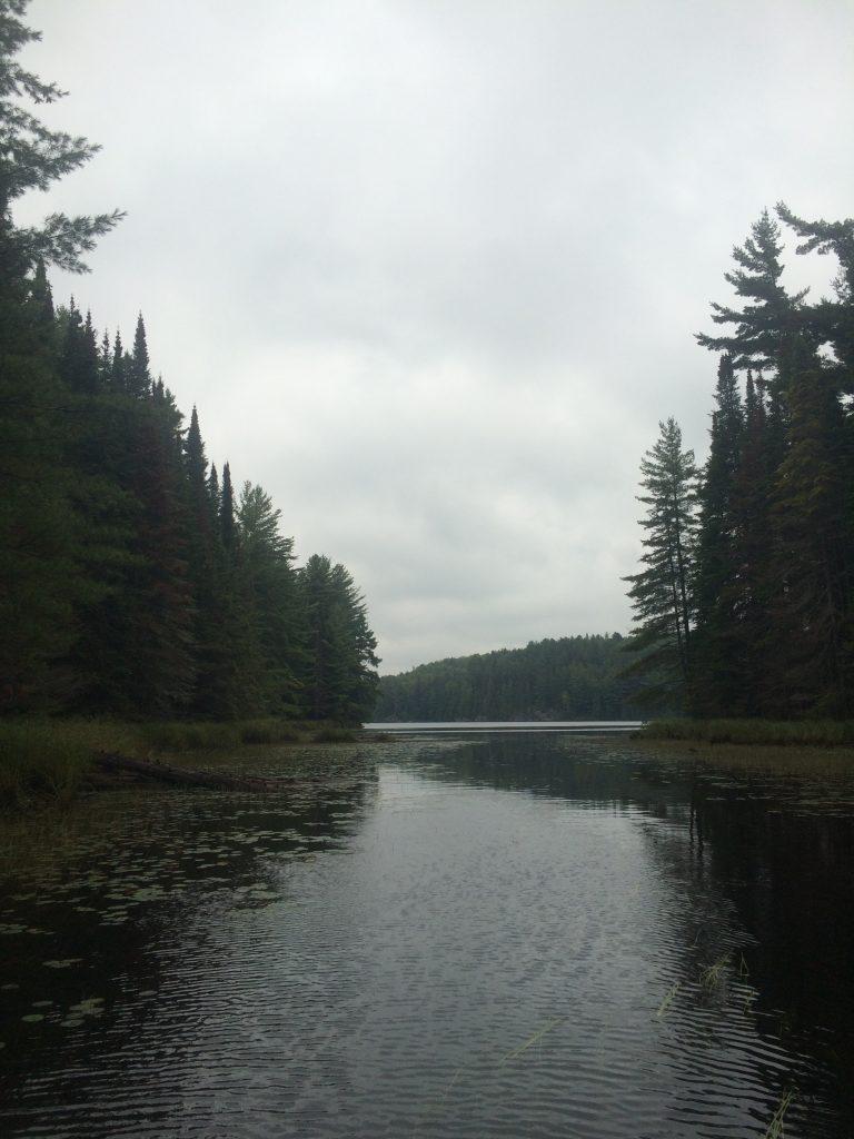 The river entrance to Barrlett Lake.