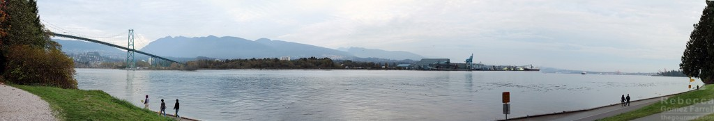 Last view of Burrard Inlet.