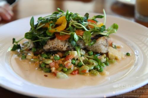 Scratch halibut succutash bean sprouts
