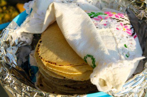 Fresh tortilla teichart ranch