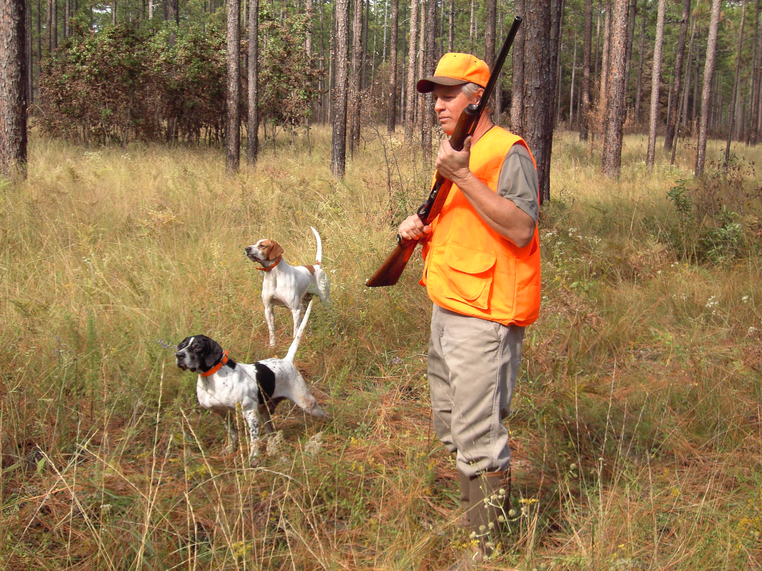 Top 10 Tips For Hunting Public Land