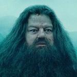 Hagrid_fyc