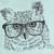 Owl_thumb