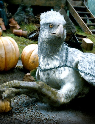 Officialexhibition_buckbeak_002