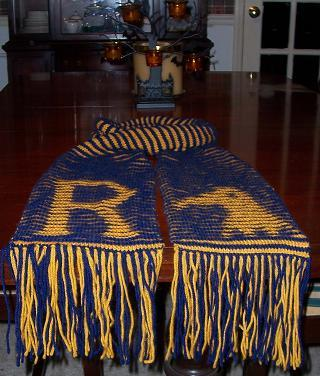 Ravenclaw Illusion Scarf - Angle View