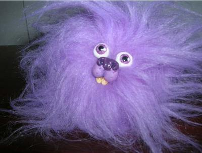 Pygmy Puff Close-up