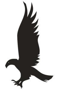 Ravenclaw's Eagle