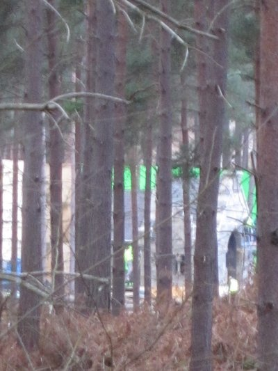 Normal_dh_set_swinleyforest10_19