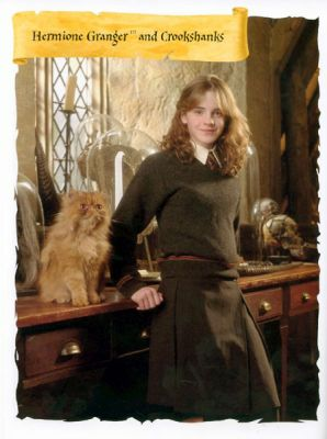 Normal_x_posterbook_05_hermione