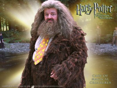 Normal_x_website_hagrid_03