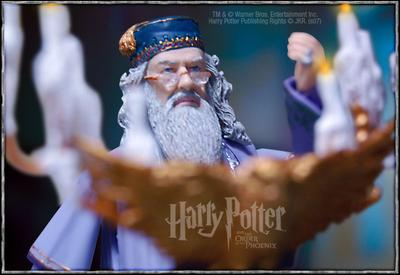 Normal_products_toys_dumbledore_006