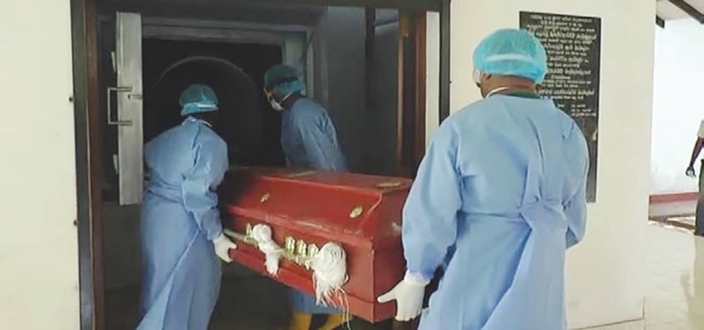Eight more COVID-19 deaths reported