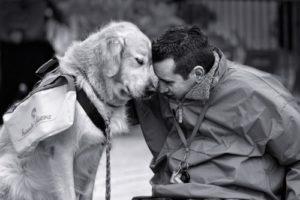 https://www.google.co.in/url?sa=i&rct=j&q=&esrc=s&source=images&cd=&cad=rja&uact=8&ved=0ahUKEwjlyY2LvbHVAhXDrI8KHaJRDVIQjRwIBw&url=http%3A%2F%2F3milliondogs.com%2Fdogbook%2F6-ways-dogs-can-help-with-depression%2F&psig=AFQjCNFIVLbL2JJ3gKux7aVYH0NMXPyjDQ&ust=1501520265626409
