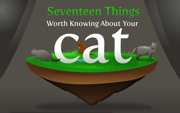 Joke About Cat Vs Internet Header