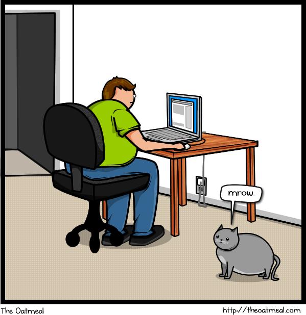 Cat V's The Internet 1