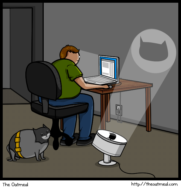 Cat V's The Internet 12