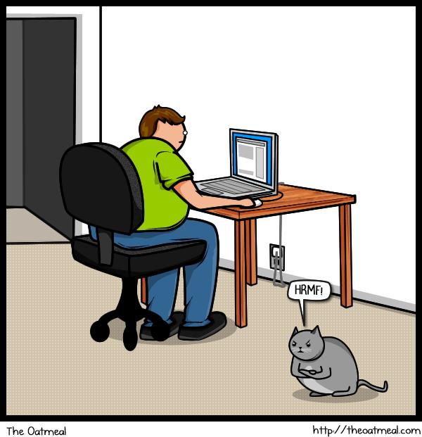 Cat V's The Internet 14