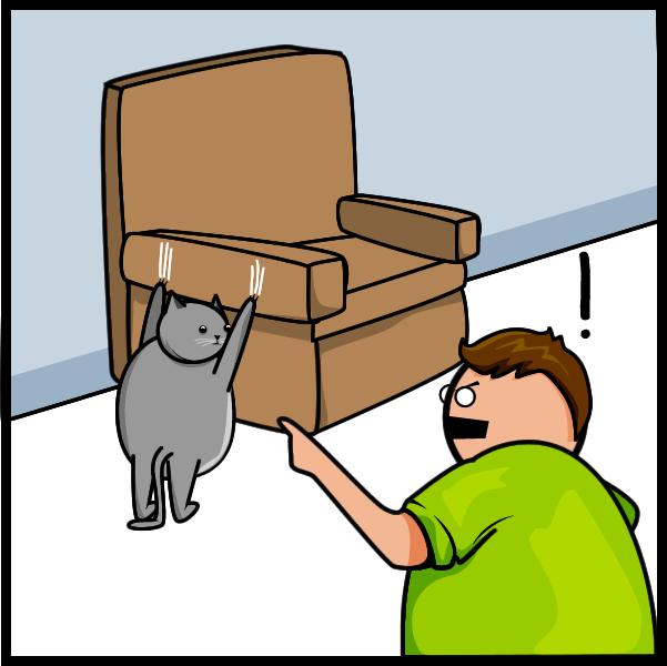 Cat V's The Internet 18