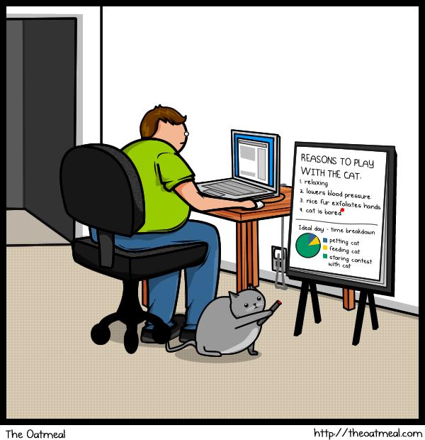 Cat V's The Internet 8